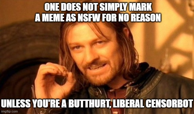 ONE DOES NOT SIMPLY MARK A MEME AS NSFW FOR NO REASON UNLESS YOU'RE A BUTTHURT, LIBERAL CENSORBOT | image tagged in memes,one does not simply | made w/ Imgflip meme maker