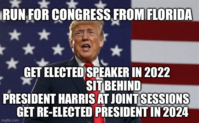 Make America Great and Democrats quiver. |  RUN FOR CONGRESS FROM FLORIDA; GET ELECTED SPEAKER IN 2022                SIT BEHIND PRESIDENT HARRIS AT JOINT SESSIONS       GET RE-ELECTED PRESIDENT IN 2024 | image tagged in president trump,maga | made w/ Imgflip meme maker