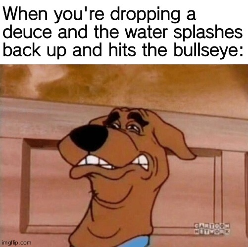 Have a nice day everyone |  When you're dropping a deuce and the water splashes back up and hits the bullseye: | image tagged in scooby cringe,scooby doo,meme,dirty joke,is that you | made w/ Imgflip meme maker