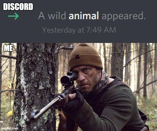 A wild animal appeared | image tagged in discord,invited,hunting,hunter,animal,reaction | made w/ Imgflip meme maker