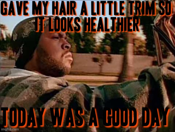Today Was A Good Day | image tagged in memes,today was a good day,hair | made w/ Imgflip meme maker