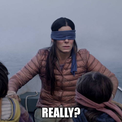 Bird Box Meme | REALLY? | image tagged in memes,bird box | made w/ Imgflip meme maker