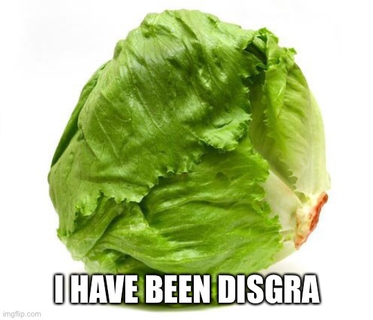 Lettuce Get Some Head | I HAVE BEEN DISGRACED | image tagged in lettuce get some head | made w/ Imgflip meme maker