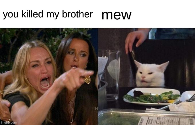 bruh |  you killed my brother; mew | image tagged in memes,woman yelling at cat | made w/ Imgflip meme maker