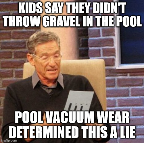 Pools are expensive, kids make it worse |  KIDS SAY THEY DIDN'T THROW GRAVEL IN THE POOL; POOL VACUUM WEAR DETERMINED THIS A LIE | image tagged in memes,maury lie detector,kids,pool,firstworldproblems | made w/ Imgflip meme maker