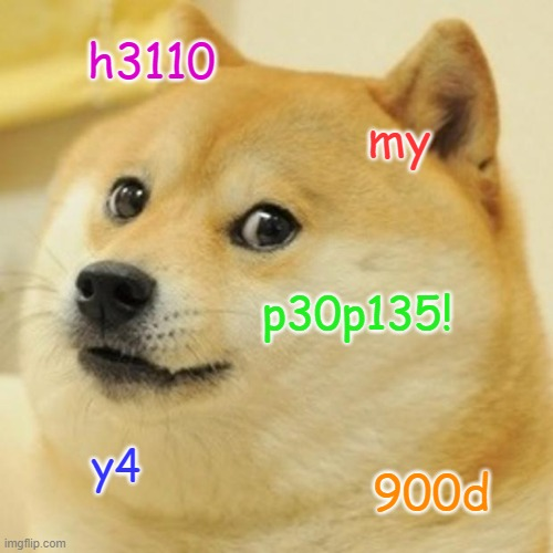 use a LEET translator to find what it means |  h3110; my; p30p135! y4; 900d | image tagged in memes,doge | made w/ Imgflip meme maker