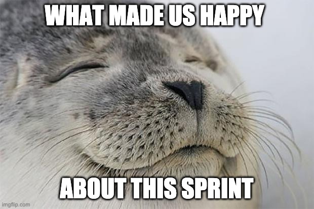 Satisfied Seal |  WHAT MADE US HAPPY; ABOUT THIS SPRINT | image tagged in memes,satisfied seal | made w/ Imgflip meme maker