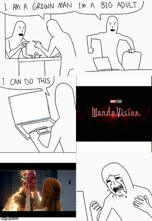 wandavision stream is not dead because the show is over. Mod note: xD nice meme! | image tagged in im a grown man,wandavision | made w/ Imgflip meme maker