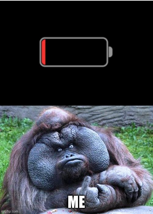 ME | image tagged in fat orangutan with middle finger | made w/ Imgflip meme maker