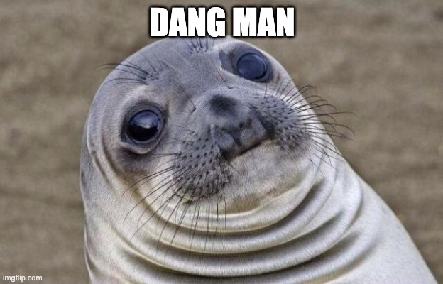 Awkward Moment Sealion Meme | DANG MAN | image tagged in memes,awkward moment sealion | made w/ Imgflip meme maker