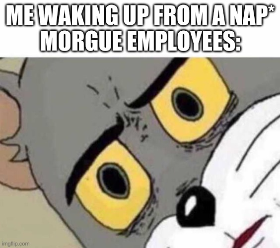 Tom Cat Unsettled Close up |  ME WAKING UP FROM A NAP* MORGUE EMPLOYEES: | image tagged in tom cat unsettled close up | made w/ Imgflip meme maker