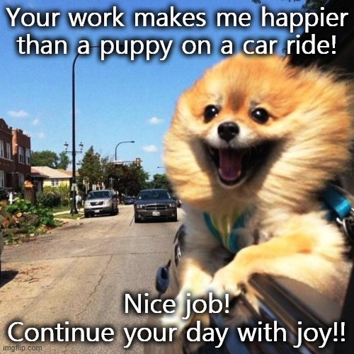 Your work makes me happier than a puppy on a car ride! Nice job! Continue your day with joy!! | image tagged in happy dog | made w/ Imgflip meme maker