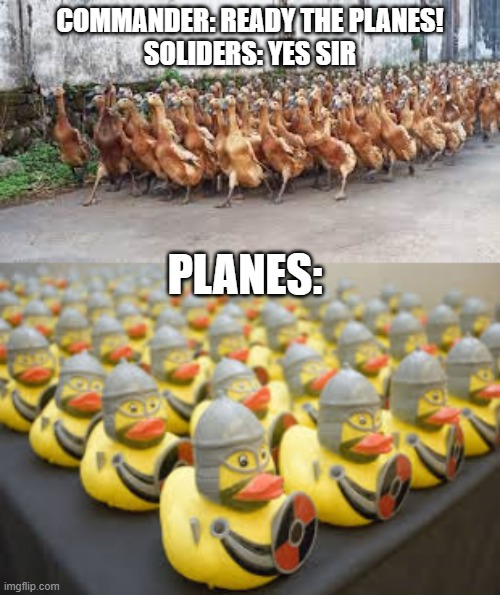 The goose army is here... |  COMMANDER: READY THE PLANES! SOLIDERS: YES SIR; PLANES: | image tagged in duck,goose | made w/ Imgflip meme maker