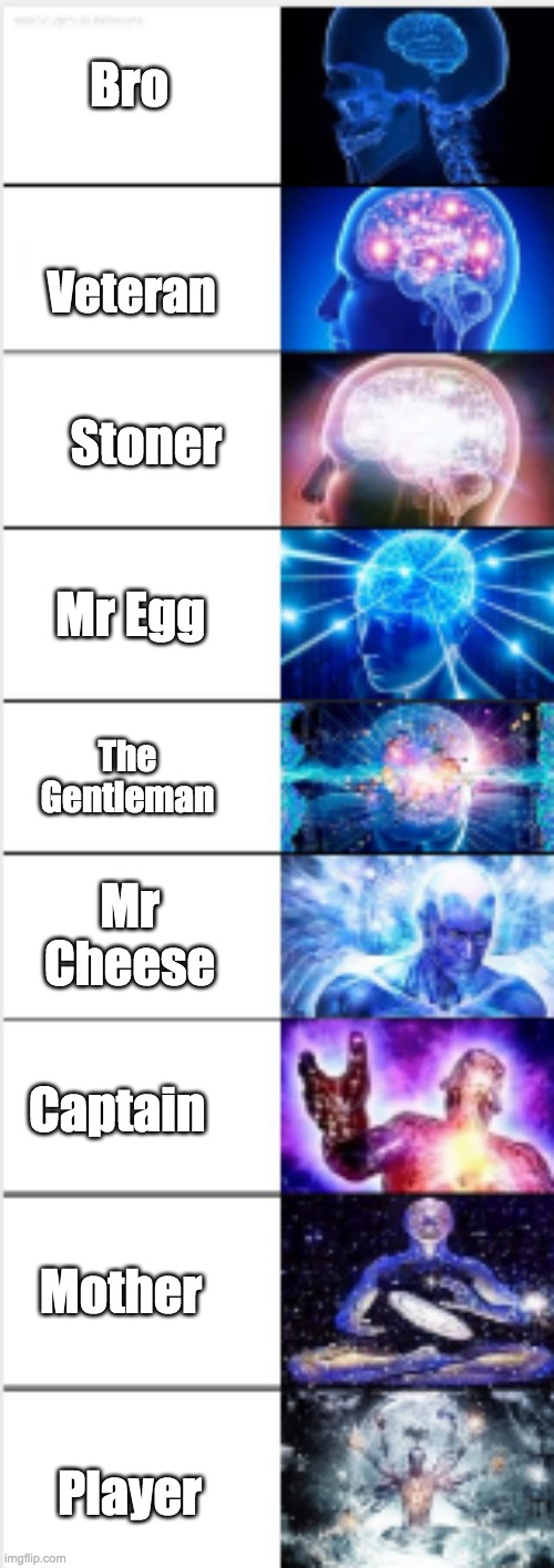 This is what i think about the main characters, and my rankings. |  Bro; Veteran; Stoner; Mr Egg; The Gentleman; Mr Cheese; Captain; Mother; Player | image tagged in expanding brain 9-panel,gametoons,mod plz | made w/ Imgflip meme maker