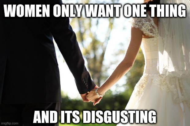 wedding |  WOMEN ONLY WANT ONE THING; AND ITS DISGUSTING | image tagged in wedding,marriage,men and women,feminism,men vs women,lol | made w/ Imgflip meme maker