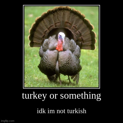 merhobble | turkey or something | idk im not turkish | image tagged in funny,demotivationals,turkey,memes,funny memes | made w/ Imgflip demotivational maker
