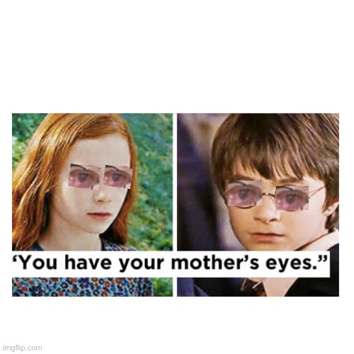 image tagged in funny memes,harry potter | made w/ Imgflip meme maker