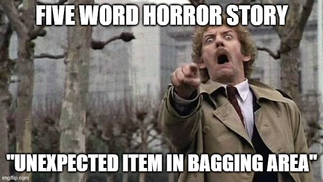 "Horror |  FIVE WORD HORROR STORY; ""UNEXPECTED ITEM IN BAGGING AREA"" 