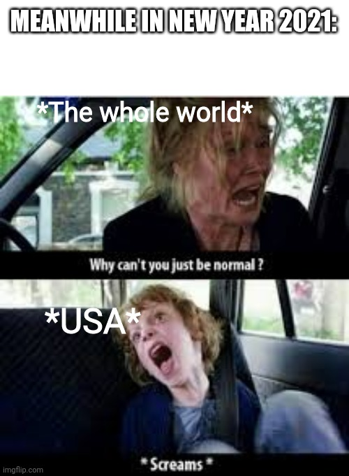 Pls |  MEANWHILE IN NEW YEAR 2021:; *The whole world*; *USA* | image tagged in why cant you just be normal | made w/ Imgflip meme maker