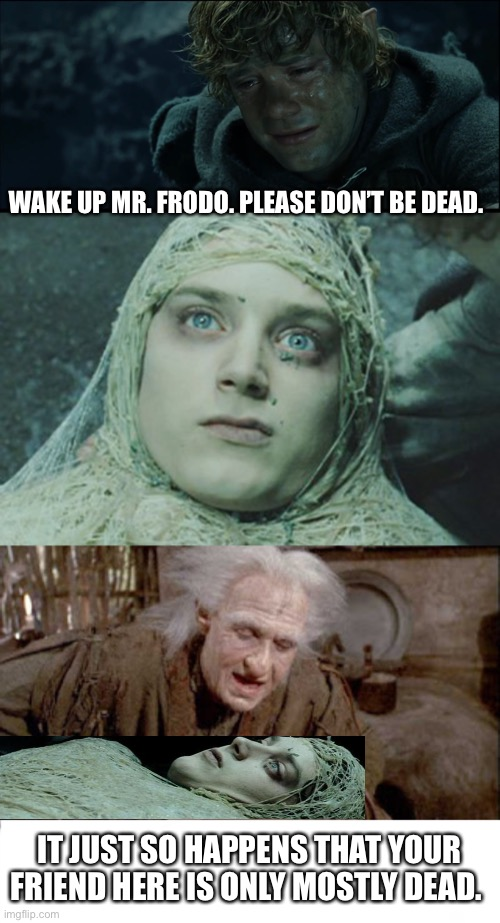 Only Mostly Dead |  WAKE UP MR. FRODO. PLEASE DON'T BE DEAD. IT JUST SO HAPPENS THAT YOUR FRIEND HERE IS ONLY MOSTLY DEAD. | image tagged in lotr,princess bride | made w/ Imgflip meme maker
