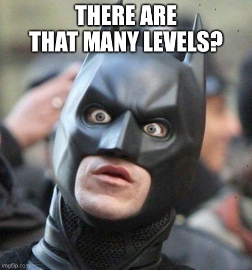 Shocked Batman | THERE ARE THAT MANY LEVELS? | image tagged in shocked batman | made w/ Imgflip meme maker