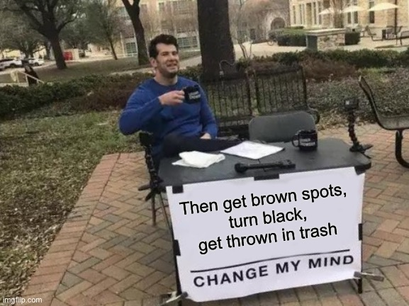 Change My Mind Meme | Then get brown spots,  turn black, get thrown in trash | image tagged in memes,change my mind | made w/ Imgflip meme maker