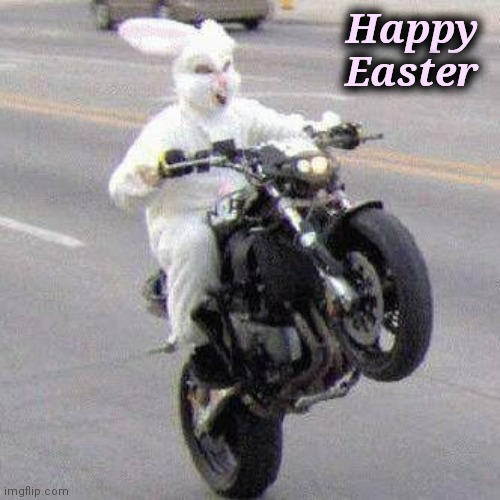 Time to break some eggs |  Happy  Easter | image tagged in funny bunny motorcycle wheelie,here it comes,wake up,easter bunny | made w/ Imgflip meme maker