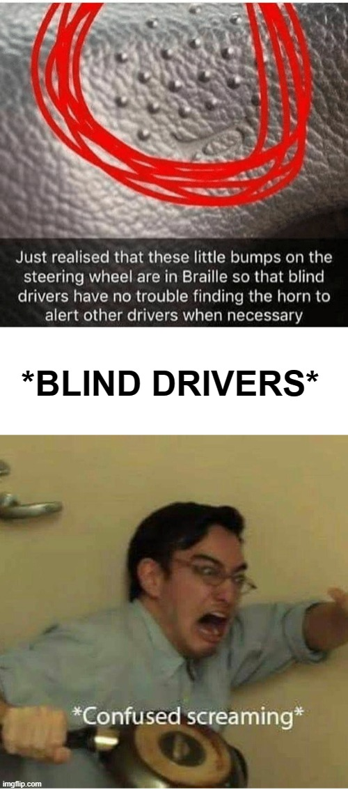 Guys BLIND DRIVERS!!!!!!!!! |  *BLIND DRIVERS* | image tagged in confused screaming | made w/ Imgflip meme maker