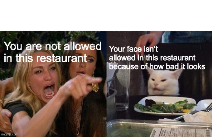 Woman mad at cat.. cat roasts woman |  Your face isn't allowed in this restaurant because of how bad it looks; You are not allowed in this restaurant | image tagged in memes,woman yelling at cat | made w/ Imgflip meme maker