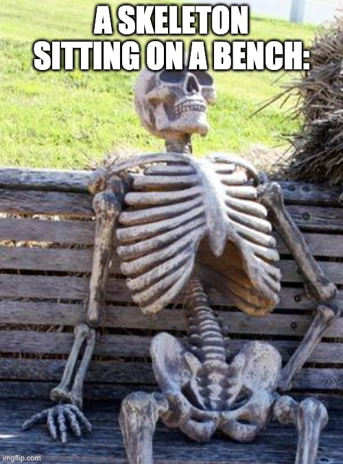 anti meme |  A SKELETON SITTING ON A BENCH: | image tagged in memes,waiting skeleton,antimeme | made w/ Imgflip meme maker