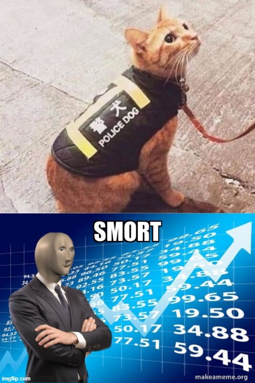 Police wolf | image tagged in police dog 2 0,i am smort | made w/ Imgflip meme maker