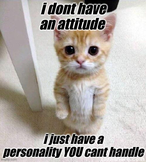 Cute Cat Meme |  i dont have an attitude; i just have a personality YOU cant handle | image tagged in memes,cute cat | made w/ Imgflip meme maker