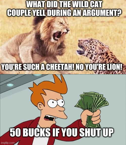 lion pun |  WHAT DID THE WILD CAT COUPLE YELL DURING AN ARGUMENT? YOU'RE SUCH A CHEETAH! NO YOU'RE LION! 50 BUCKS IF YOU SHUT UP | image tagged in memes,shut up and take my money fry,jokes,bad pun,lion,cat | made w/ Imgflip meme maker