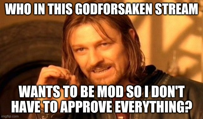 One Does Not Simply |  WHO IN THIS GODFORSAKEN STREAM; WANTS TO BE MOD SO I DON'T HAVE TO APPROVE EVERYTHING? | image tagged in memes,one does not simply | made w/ Imgflip meme maker