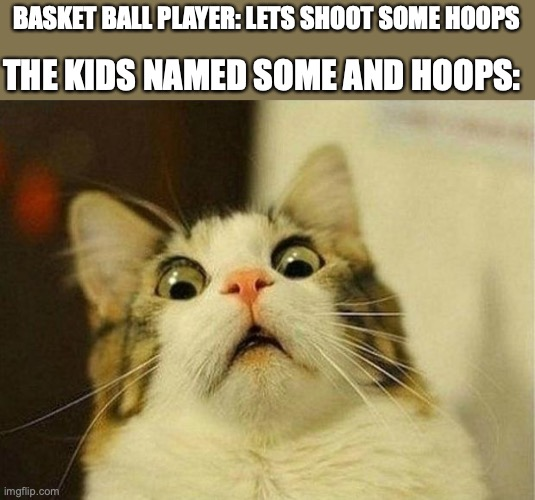 Scared Cat Meme |  BASKET BALL PLAYER: LETS SHOOT SOME HOOPS; THE KIDS NAMED SOME AND HOOPS: | image tagged in memes,scared cat,demotivationals,pie charts,gifs | made w/ Imgflip meme maker