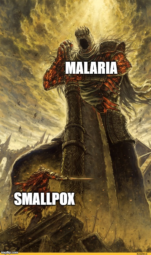 big and small | SMALLPOX MALARIA | image tagged in big and small | made w/ Imgflip meme maker
