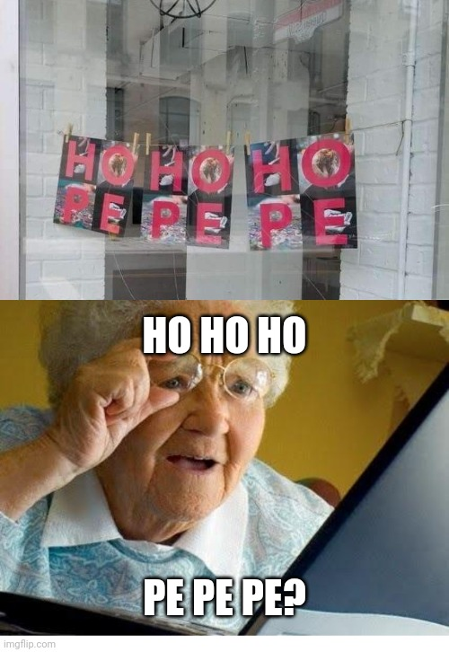 Hohoho pepepe |  HO HO HO; PE PE PE? | image tagged in old lady at computer | made w/ Imgflip meme maker