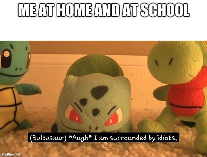 I'm surrounded by idiota |  ME AT HOME AND AT SCHOOL | image tagged in i am surrounded by idiots | made w/ Imgflip meme maker