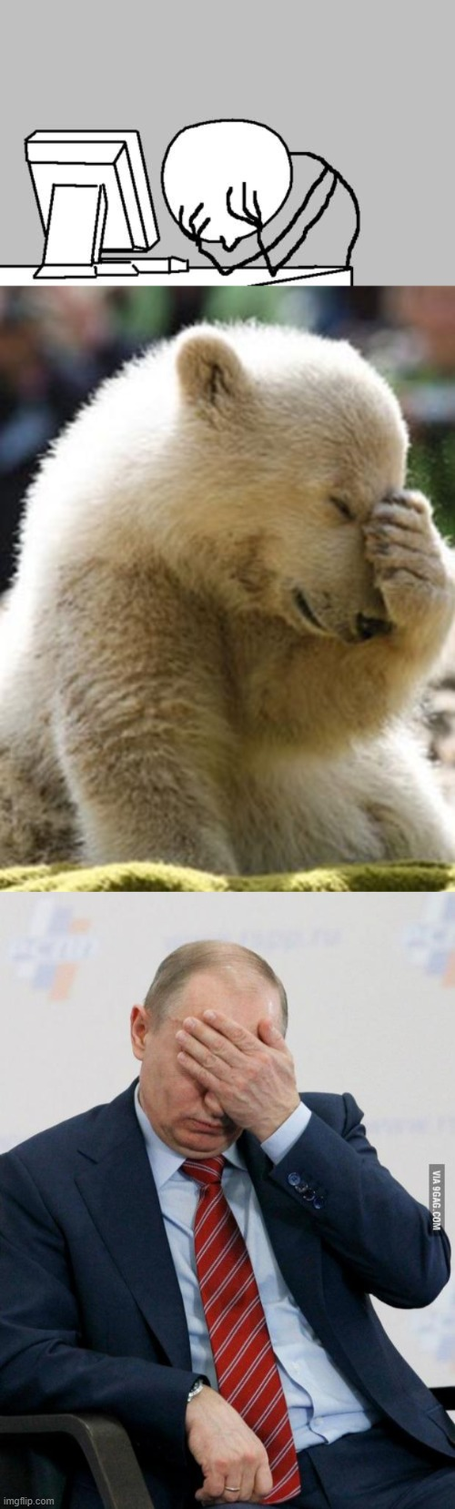 image tagged in memes,computer guy facepalm,facepalm bear,putin facepalm | made w/ Imgflip meme maker