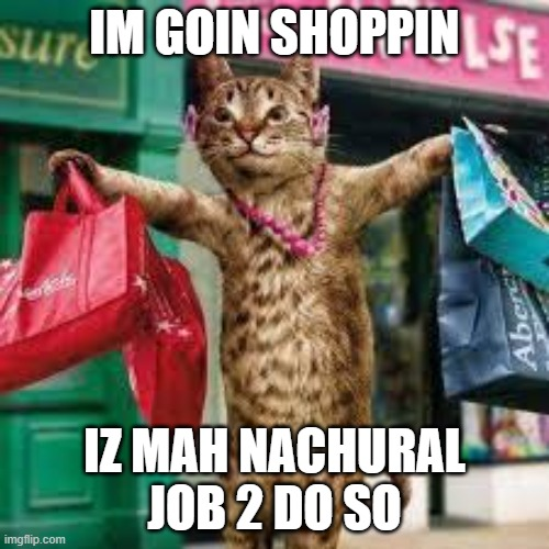 When you realize your cat is going shopping |  IM GOIN SHOPPIN; IZ MAH NACHURAL JOB 2 DO SO | image tagged in cat shopping,when you realize | made w/ Imgflip meme maker