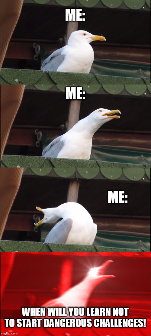 WHEN WILL YOU LEARN |  ME:; ME:; ME:; WHEN WILL YOU LEARN NOT TO START DANGEROUS CHALLENGES! | image tagged in memes,inhaling seagull | made w/ Imgflip meme maker