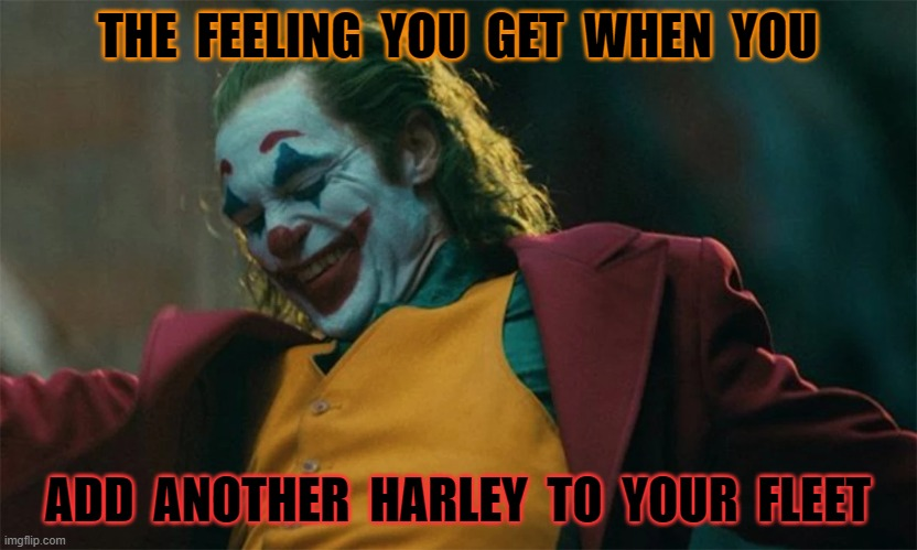 THE  FEELING  YOU  GET  WHEN  YOU; ADD  ANOTHER  HARLEY  TO  YOUR  FLEET | image tagged in harley | made w/ Imgflip meme maker