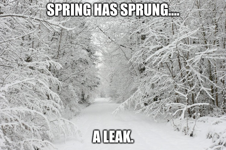 Springtime |  SPRING HAS SPRUNG.... A LEAK. | image tagged in snowy forest | made w/ Imgflip meme maker