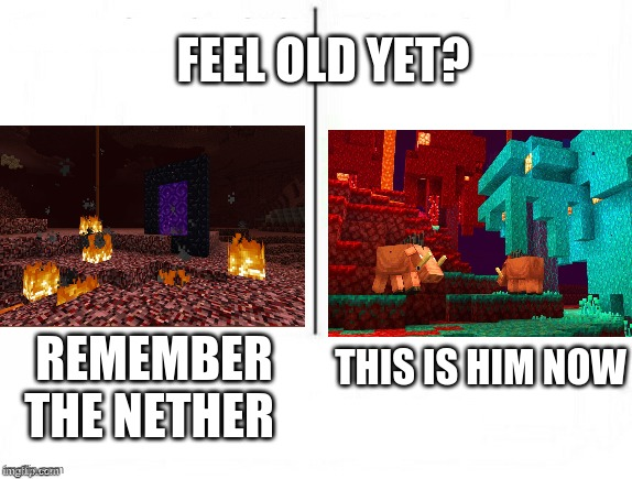 feel old yet? |  FEEL OLD YET? THIS IS HIM NOW; REMEMBER THE NETHER | image tagged in feel old yet | made w/ Imgflip meme maker