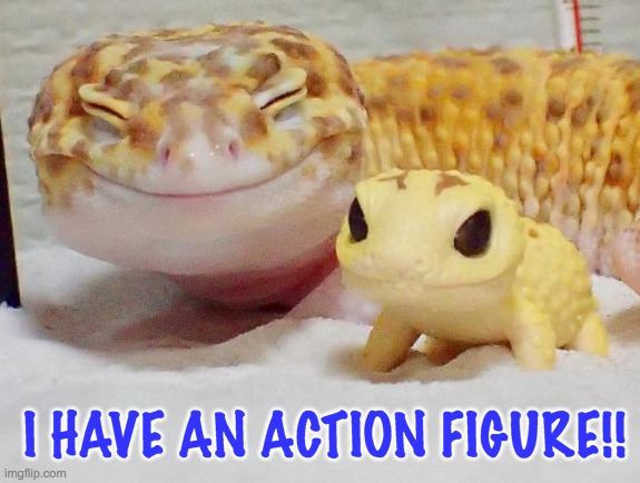 Everyone needs toys |  I HAVE AN ACTION FIGURE!! | image tagged in gecko's baby,gecko,lizard,toy,cute | made w/ Imgflip meme maker