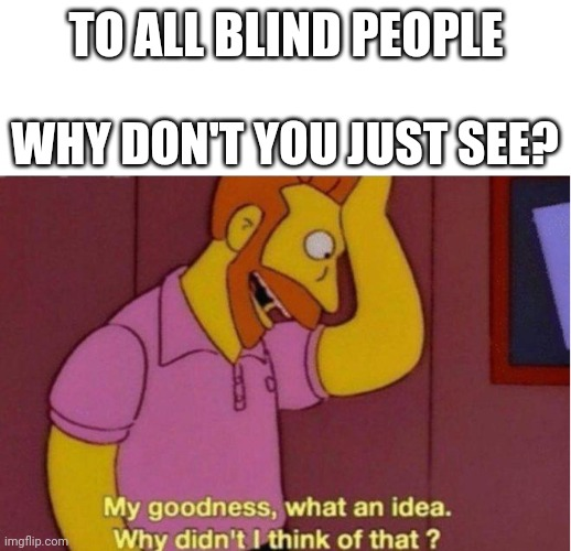 lol it's kinda similar to my other one |  TO ALL BLIND PEOPLE; WHY DON'T YOU JUST SEE? | image tagged in my goodness what an idea why didnt i think of that | made w/ Imgflip meme maker