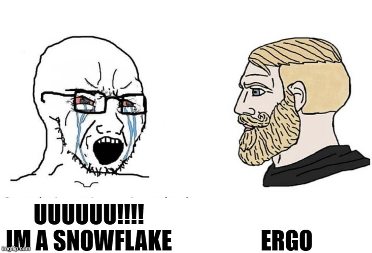 ergo |  ERGO; UUUUUU!!!! IM A SNOWFLAKE | image tagged in soyboy vs yes chad | made w/ Imgflip meme maker