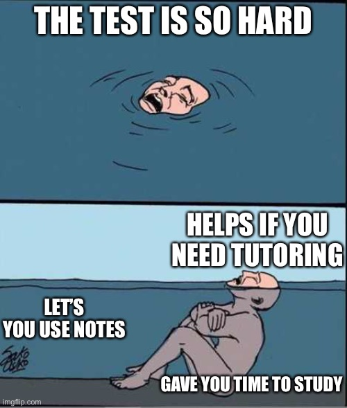 True |  THE TEST IS SO HARD; HELPS IF YOU NEED TUTORING; LET'S YOU USE NOTES; GAVE YOU TIME TO STUDY | image tagged in crying guy drowning | made w/ Imgflip meme maker