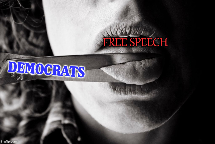 FREE SPEECH; DEMOCRATS | image tagged in conservatives | made w/ Imgflip meme maker