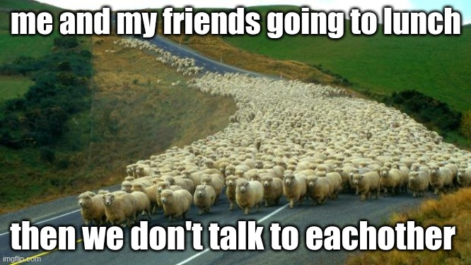 sheep |  me and my friends going to lunch; then we don't talk to each other | image tagged in sheep | made w/ Imgflip meme maker